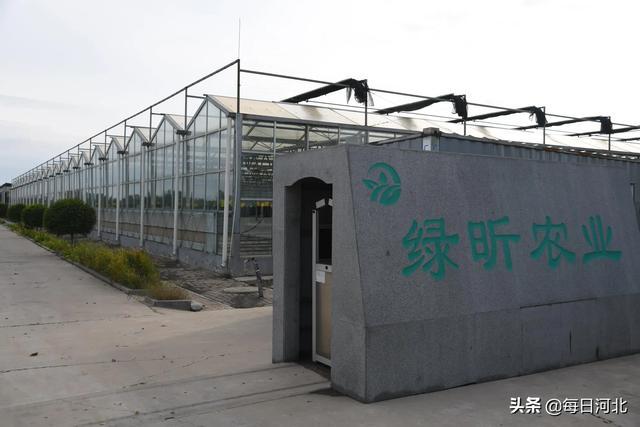 亚博APP手机版:吕鑫农业反季节种植提高农民收入