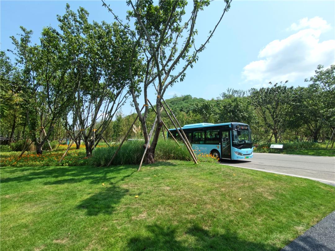 广阳岛16个重点项目,力争年内开工图片