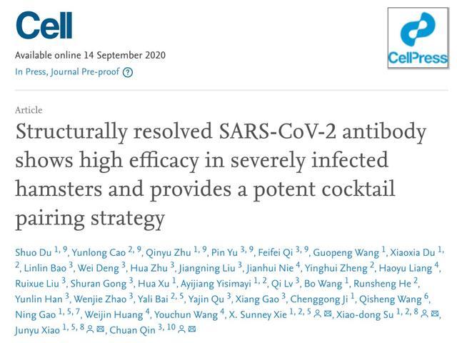北大团队新发现:某些抗体结合可抑制新冠病毒突变体图片