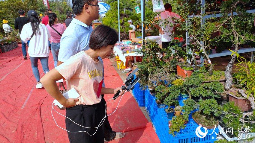 江苏沭阳:以花为媒 发展绿色产业