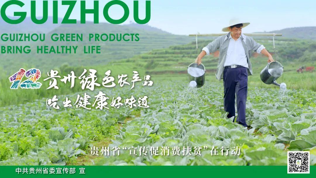 贵州(清镇)生态食品文化节召开清镇市特