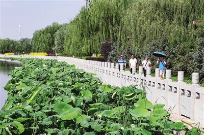 【青城眼】玉泉区精准推进水、大气、土壤同步