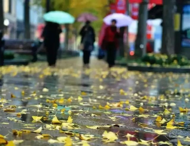 10月乐山降水趋于结束 仍需关注地灾易发区