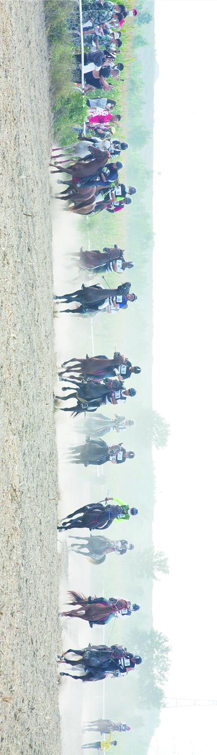飞驰如风,省马术锦标赛暨潍坊滨海马术文化节滨海开赛
