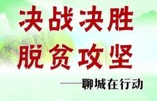 广泛宣传精准扶贫政策!莘县莘州街道扶贫宣传标语进村入户