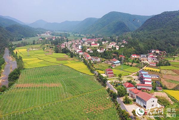 """湖北南漳:""""旅游农业文化""""融合成长打造"""