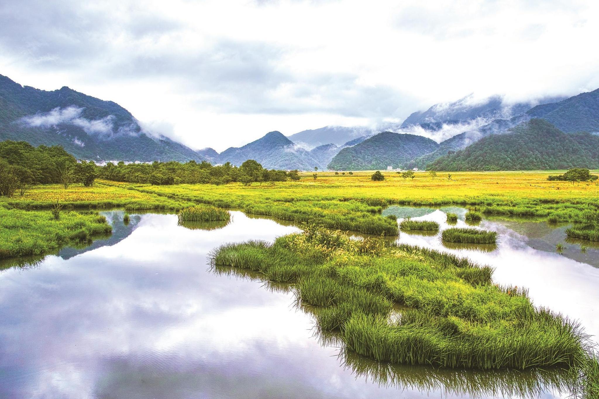 绿水青山之间的生态回声——写于神农架