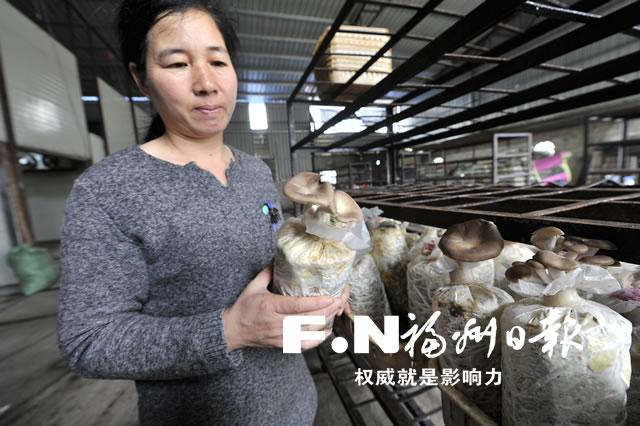 福州全方位打造现代农业食用菌产业链