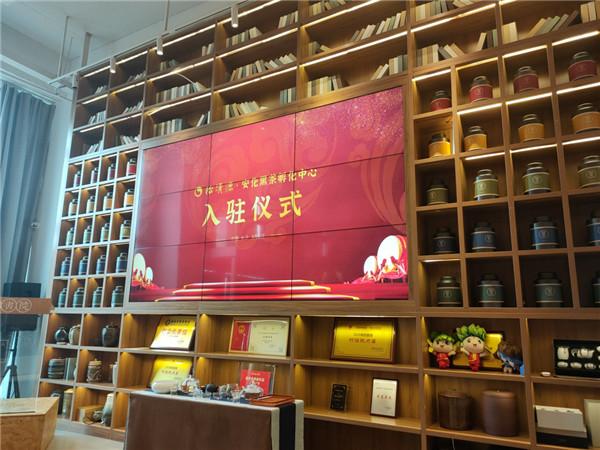 怡清源落户安化红茶离岸孵化中心