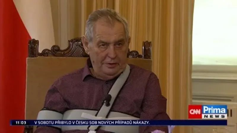 ▲捷克总统泽曼接受采访。(视频截图)