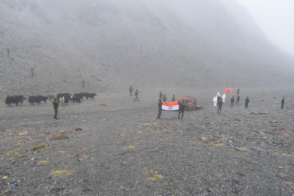 """印军向中国归还17头牦牛 被印媒""""脑补""""成间谍"""