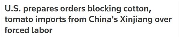 不只是棉花,特朗普政府还盯上了新疆番茄