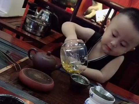 """""""大人物宝宝""""专业喝茶火了,万丈红尘三杯酒,千秋大业一盏茶"""