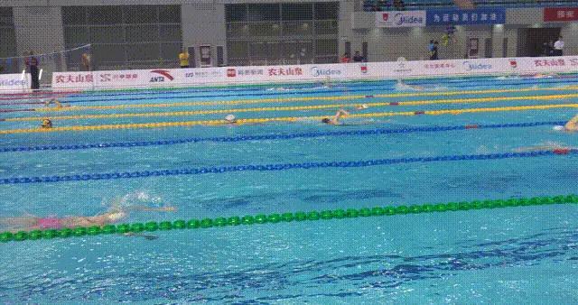 名将徐嘉余、傅园慧亮相中国游泳争霸赛 河北再添一枚银牌