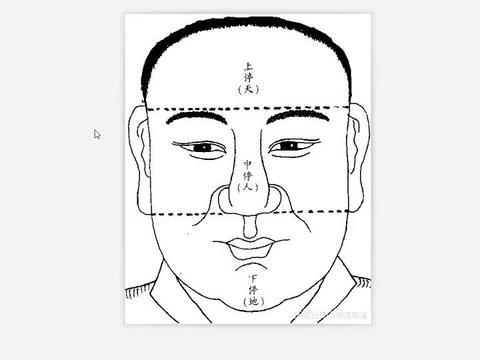 下眼睑的简单看法(七)