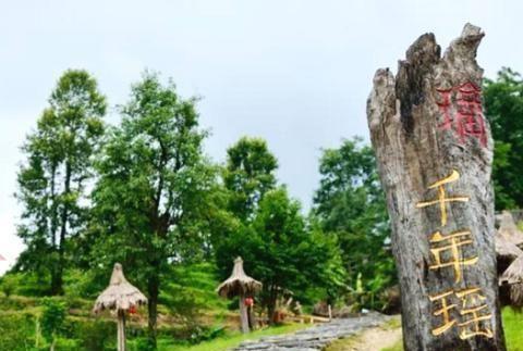 远离城市喧嚣,周末去广州周边这个千年瑶寨最妙