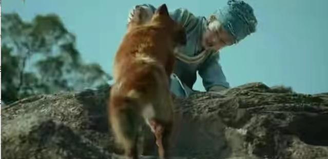 李现在《赤狐书生》中演了只灵动妖魅的狐狸