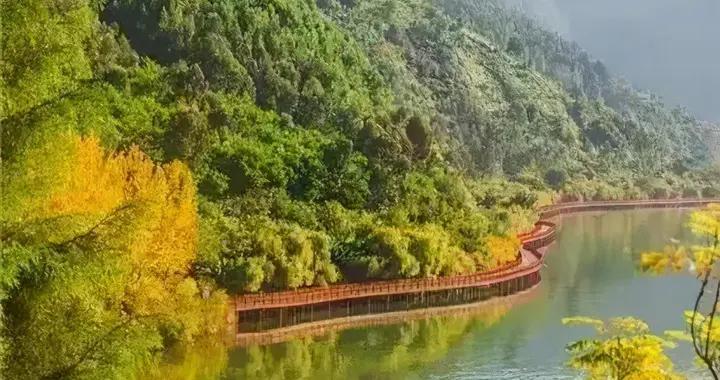 暖冬的邛泸景区,处处湖光山色,步步鸟语花香