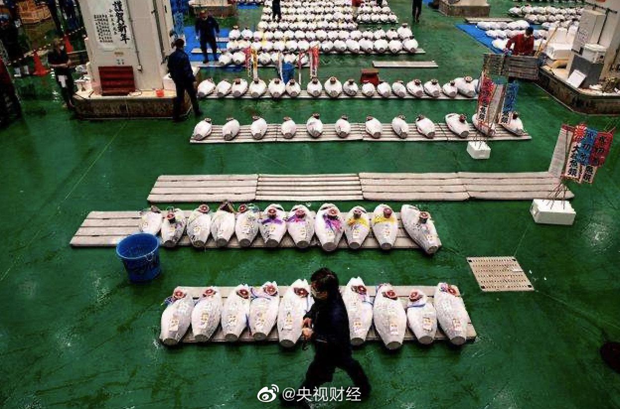 疫情冲击,日本新年金枪鱼拍卖价暴跌九成
