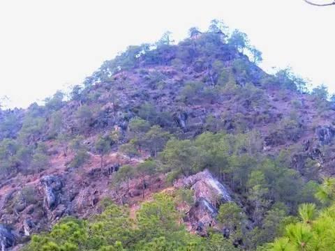 金顶名源于金顶寺,兰坪金顶二五山,是中外游客所仰慕的游览胜地