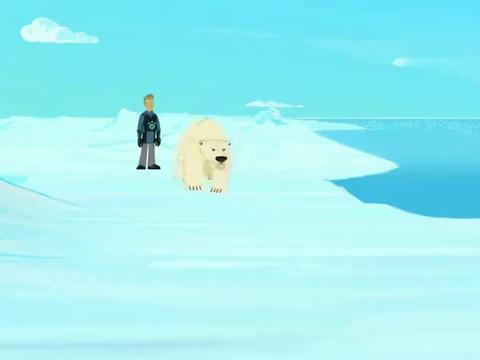 动物兄弟:克里斯不知道在水里怎么游动,被海象撞来撞去
