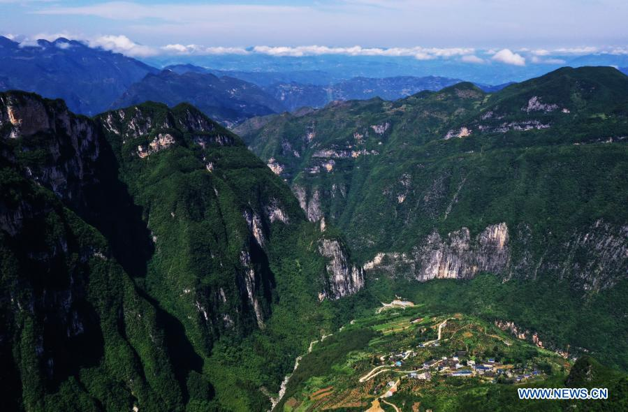 Aerial photo taken on July 3, 2020 shows the view of Xiazhuang Village, Zhuxian Township, Wushan County of southwest China's Chongqing. For those who lived in Xiazhuang Village, it once took them two days to reach the nearest county. Thanks to the unceasing efforts of Mao Xianglin, the onerous travelling has become a history. In 1997, 38-year-old Mao Xianglin, the secretary of Communist Party of China (CPC) branch of Xiazhuang Village and head of the village committee, mobilized the villagers to build a better road to the outside world. To speed up the road building, Mao once worked and lived at the construction site for three months without going home. Finally in 2004, an 8-kilometer long and 2-meter wide road was finished. After more widening and hardening work conducted by the local government, the travel time from Xiazhuang Village to the county seat has been slashed to about one and a half hours. For Mao, building a road is the first step, and seeking a way to prosperity is the second. After consulting experts, he decided to develop orange planting industry in the village. Now, the orange orchard here covers an area of about 650 mu (about 43.3 hectares), and the whole village has shaken off poverty in 2015.