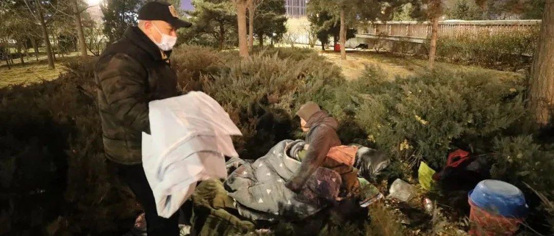北京零下18°,他们发现有人露宿在冬青树丛内……