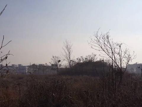 郑州一座寒酸的帝陵,生前只做三年皇帝,封土上分布密集盗洞