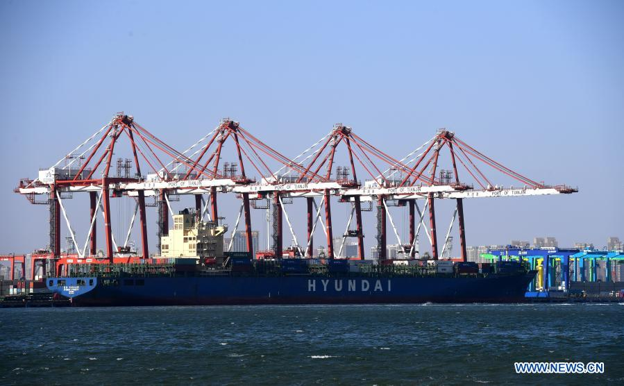 A container ship is seen at the Euro-Asian international container terminal at the Tianjin Port of north China's Tianjin Municipality, Jan. 11, 2021. The Tianjin Port set a new record of 18.35 million twenty-foot equivalent units (TEU) for its container throughput in 2020, or a year-on-year growth of 6.1 percent. (Xinhua/Zhao Zishuo)