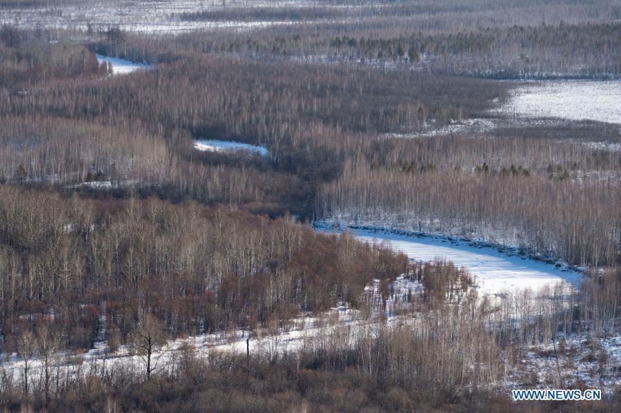 Photo taken on Jan. 11, 2021 shows the winter scenery of a scenic spot in Mohe City, northeast China's Heilongjiang Province. (Xinhua/Xie Jianfei)