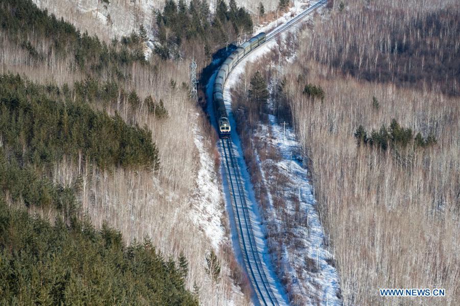 Photo taken on Jan. 11, 2021 shows a train running through a forest in a scenic spot in Mohe City, northeast China's Heilongjiang Province. (Xinhua/Xie Jianfei)