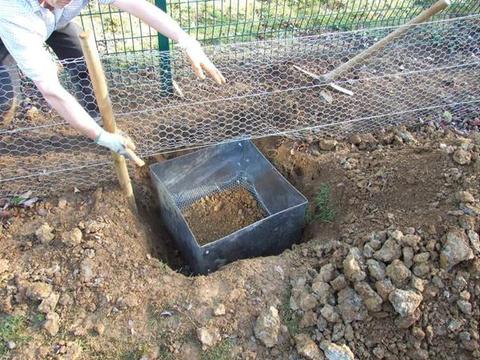 男子在农场防护栏埋下奇怪铁箱,随后捕获让人惊喜的野兔