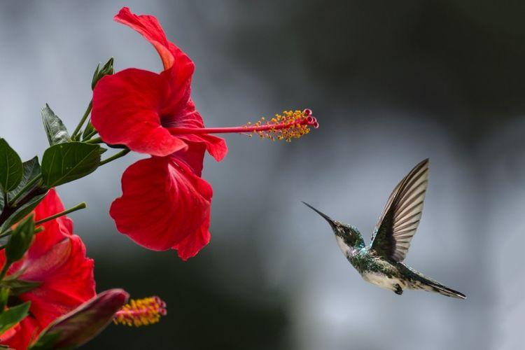 1月中旬,桃花绕身,相逢良人,秋风传情,4大星座爱情迎来大爆发