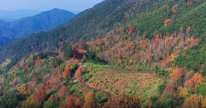 福州这里漫山红叶,层林尽染……