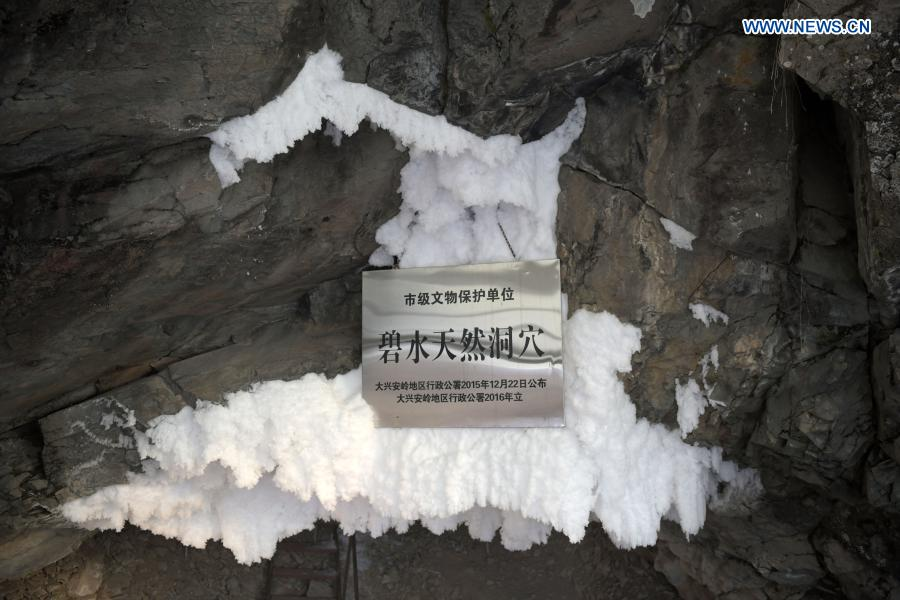 Photo taken on Jan. 11, 2021 shows icicles at the entrance to a natural cave in Huzhong District at the northern foot of the Dahinggan Mountains in northeast China's Heilongjiang Province. Huzhong District is known as