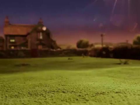 小羊肖恩:狗狗在草坪里收拾落叶,结果越收拾越多,可真让人头疼