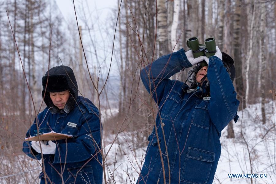 Lyu Jiansheng (R) and Wang Shaoting conduct power line patrol in the forest near Beiji Village of Mohe City, northeast China's Heilongjiang Province, Jan. 12, 2021. Beiji Village, located in Mohe City, the northernmost city in China, could only rely on small diesel generators for power supply before 2007. After connecting to the State Grid, Beiji Village set up the northernmost power supply station in China, the Beiji Power Supply Station. Director Lyu Jiansheng and meter reader Wang Shaoting are the only two staff members of the station which is in charge of more than 20 kilometers of overhead lines and 70 kilometers of buried cable lines around it. The temperature in the village often drops to below minus 40 degrees Celsius, and they patrol along the line every once in a while. In 2020, the power supply station renovated multi-functional exhibition hall and canteen, purchased kitchenware and installed bathroom.