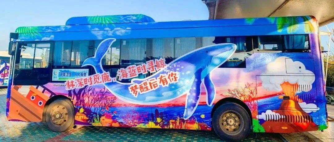 涠洲岛一批鲸鱼主题彩绘公交车上路