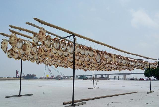 市场博物:家庭晒咸鱼干如何应对苍蝇产卵