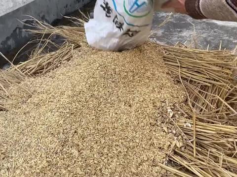 江西赣州农村,传承300多年的烧酒工艺,这样煮酒你们见过吗?