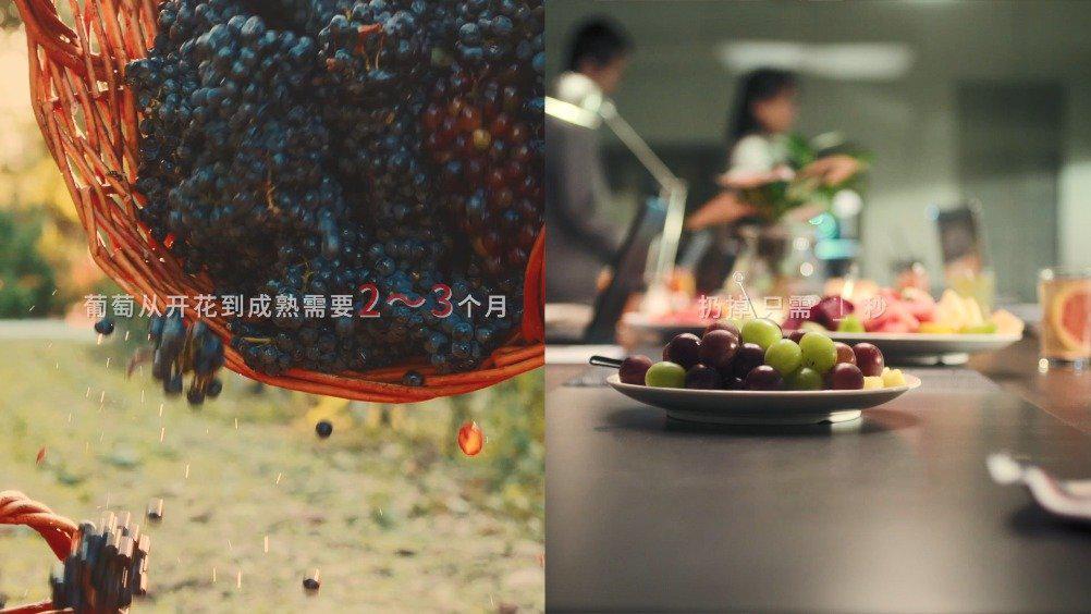葡萄从开花到成熟需要2-3个月……