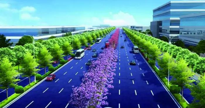 博白计划新建40米宽大道