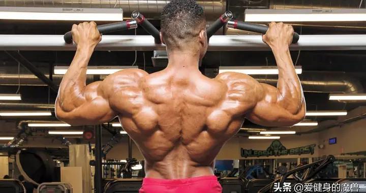 高手的背部细节满满,加入哪些动作也能练出来?