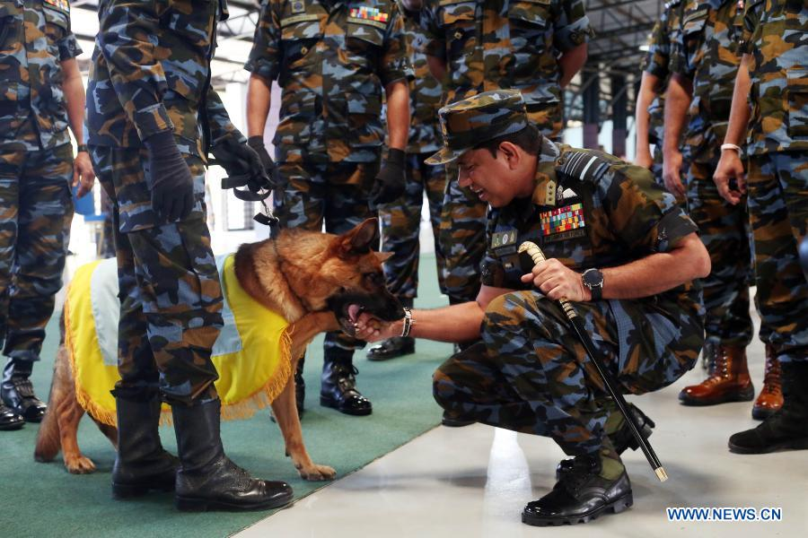 A trainer interacts with a sniffer dog before attending a pass ceremony at the Sri Lanka Air Force (SLAF) Base in Katunayake, Sri Lanka, Jan. 13, 2021. A group of 20 dogs under the SLAF Dog Unit attended the pass ceremony on Wednesday. They were specially trained as sniffer dogs for detecting of drug trafficking, and would be deployed at airports in the country. (Photo by Ajith Perera/Xinhua)