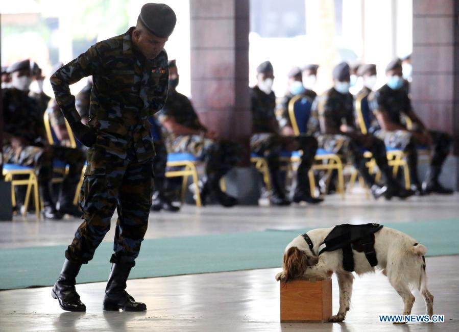 A sniffer dog led by its trainer takes a sniffing test at the Sri Lanka Air Force (SLAF) Base in Katunayake, Sri Lanka, Jan. 13, 2021. A group of 20 dogs under the SLAF Dog Unit attended the pass ceremony on Wednesday. They were specially trained as sniffer dogs for detecting of drug trafficking, and would be deployed at airports in the country. (Photo by Ajith Perera/Xinhua)