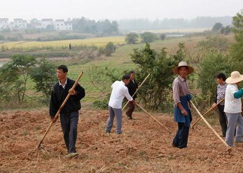 如果农民不用打工,光种自家耕地!将会过着什么的生活水平?
