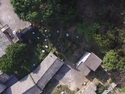广西玉林小伙养200多窝蜜蜂,一点出路都没有,现在不想养了