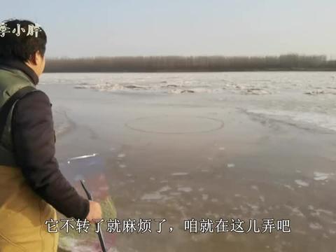 小伙拽上黄河大甲鱼像跛劳一样大,太沉了提不动,堪称巨物