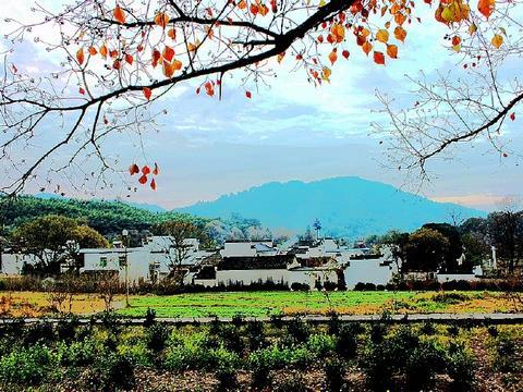 塔川,徽州的一个小村庄,每年秋天摄影爱好者必去的地方