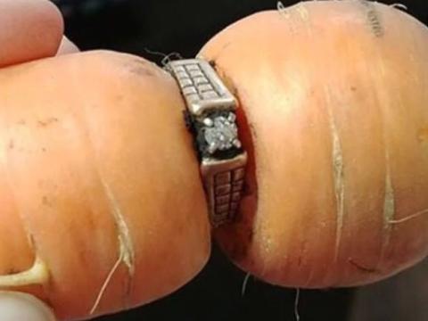 大妈菜地摘萝卜,发现萝卜上卡了颗戒指,三个月后,步入婚姻殿堂